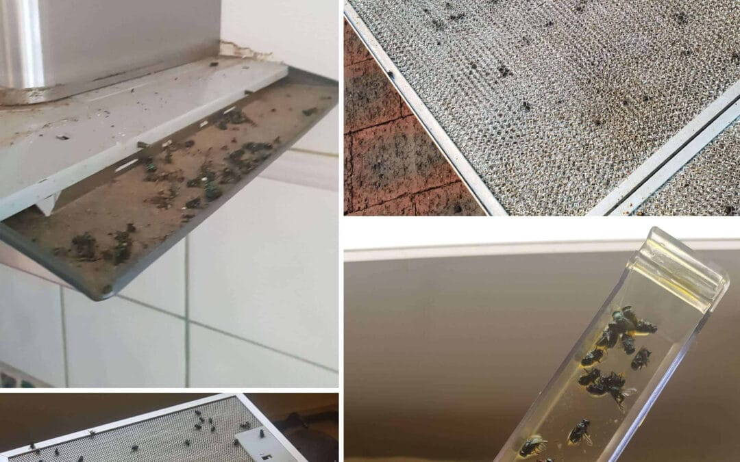 Flies And Rodents Entering The Rangehood Via Standard Roof Flumes